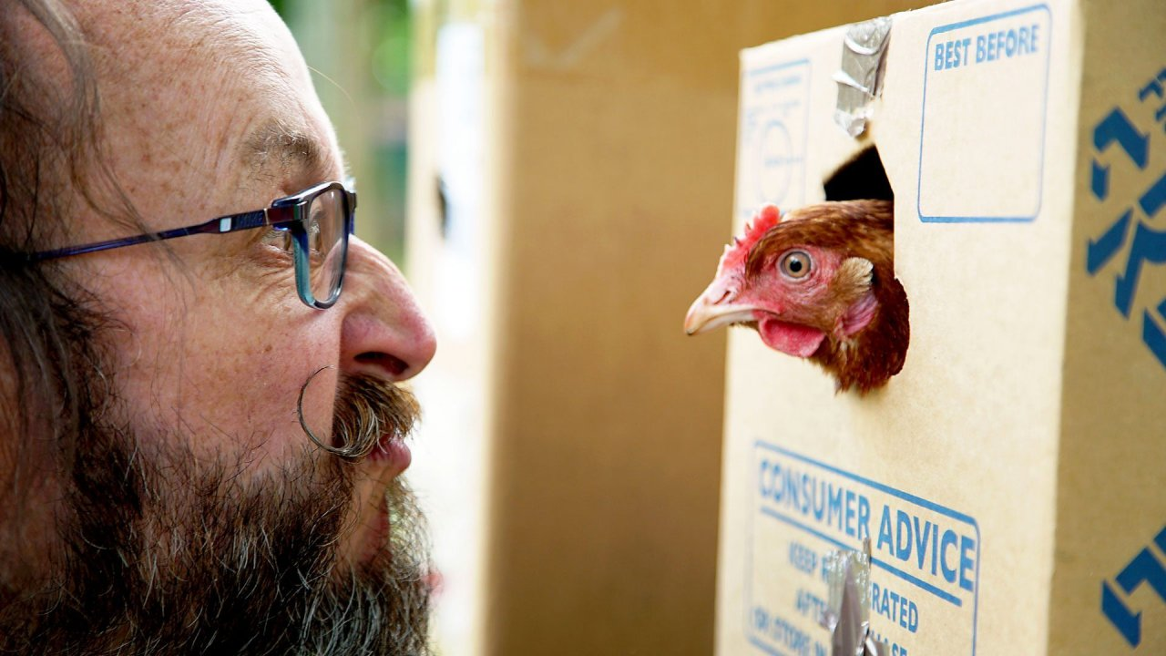 Chicken & Egg: Tuesdays, 8pm on BBC Two